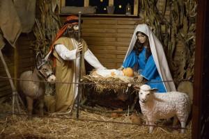 2016. november 27. - Advent I.