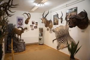 Hidvégi Béla állandó vadászkiállításának megnyitója - 2018. február 24.